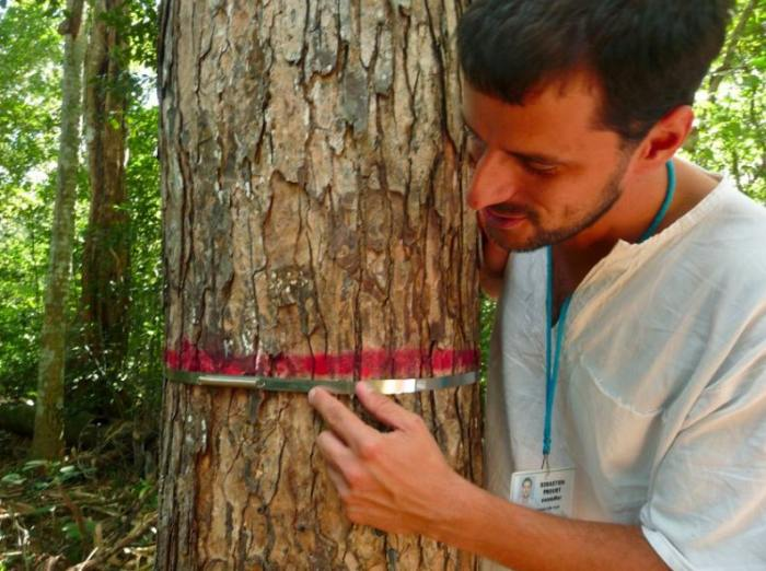 Туризм на Карибском побережье Мексики: открывать природу, а не уничтожать ее!