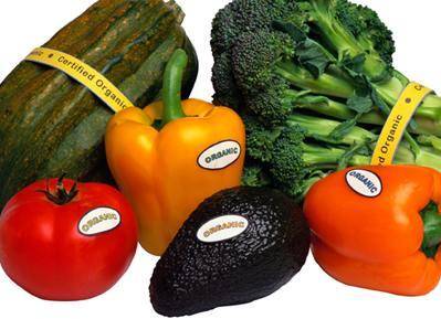 Alimente, identice celor naturale