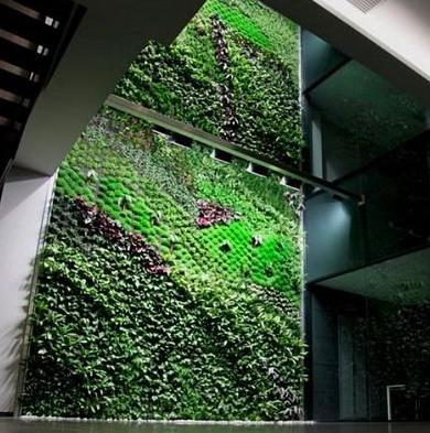 Grădina vertical din Spania curăţă aerul în birouri