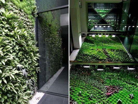 Вертикальный сад в Испании очищает воздух в офисах