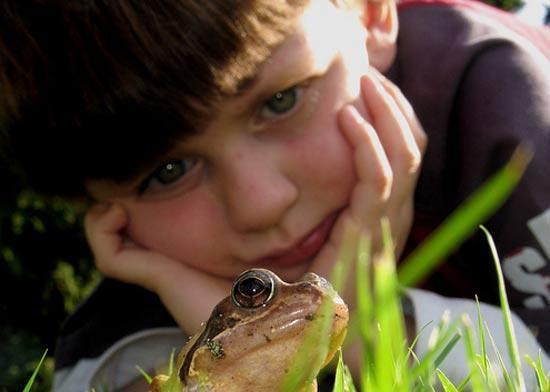 Педагогические условия становления бережного отношения к природе у детей дошкольного возраста