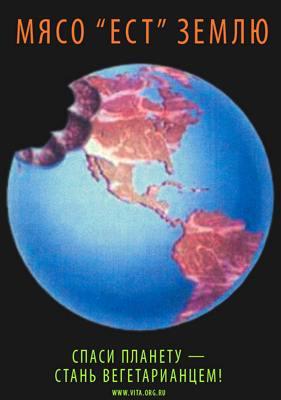 Сыроедение - самое экологичное питание в мире
