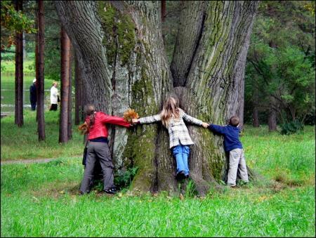 Уважение к природе – основа экологического воспитания