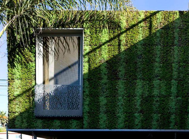Casa verde în SUA (Foto)