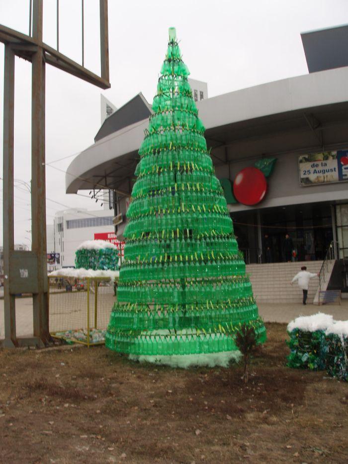 Bradul din sticle de plastic la Chisinau (Foto)