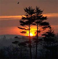 Истинные блага 7. Встреча Солнца