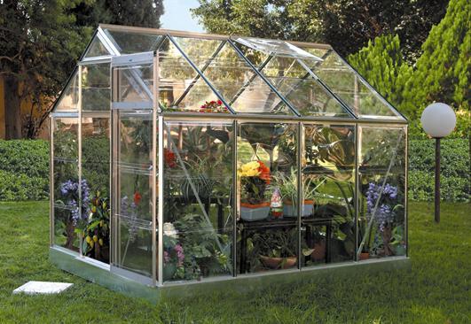 Что выращивать в теплице