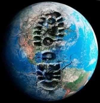 Ecologia: fapte şi cifre