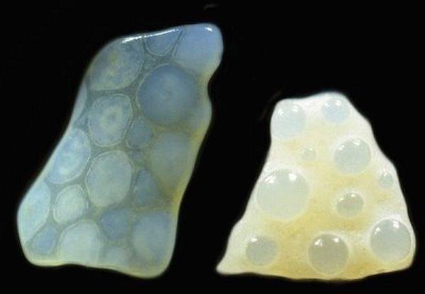 Микрофотография: Песок. Россыпи драгоценностей под ногами (+Видео)