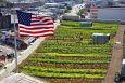 Крупнейшая в мире ферма на крыше в Бруклине расширяется!