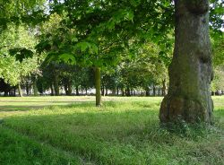Правительство Москвы разобьет парк на каждом пустыре