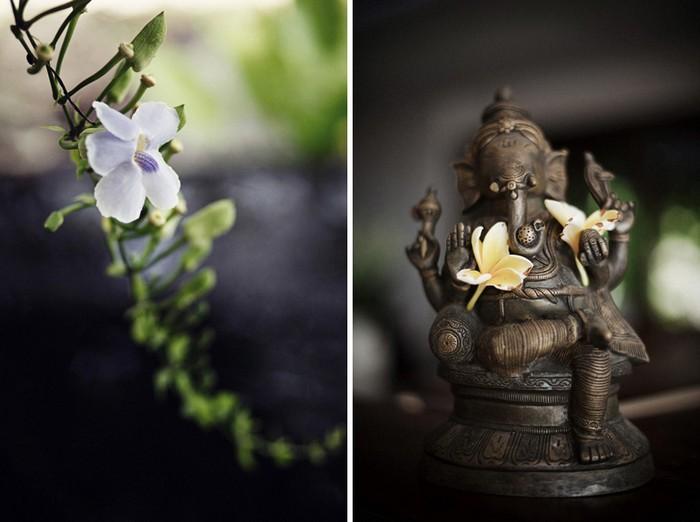 Fotografii realizate în Bali (Foto)
