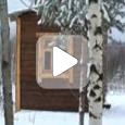 Anul Nou într-o civilizaţie nouă (Video)