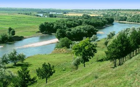 Experţii sînt îngrijoraţi de defrişările masive de păduri în Moldova