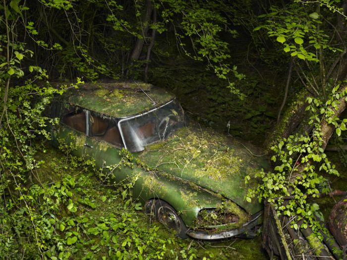 Viitorul auto (Foto)