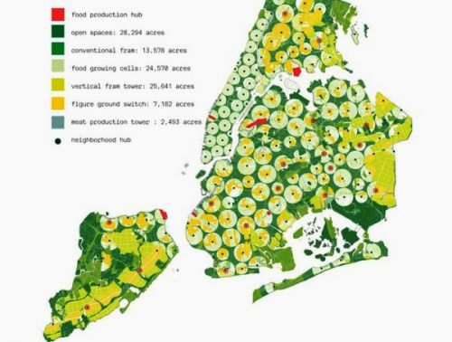 Нью-Йорк превратят в одну большую ферму