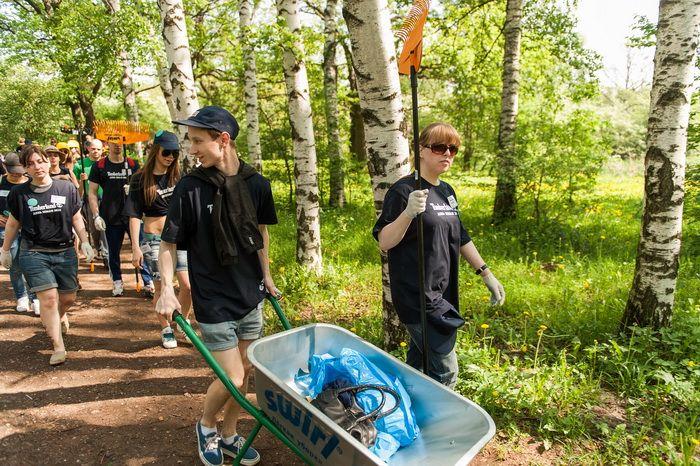 Curăţarea globală Timberland de