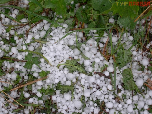 Grindina a afectat roada în şase localităţi din Moldova