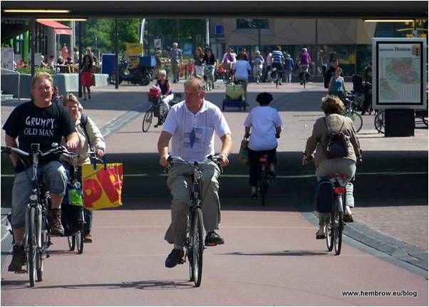 Общественные и специально оборудованные велосипедные дорожки. Велосипедные стоянки: Опыт Дании