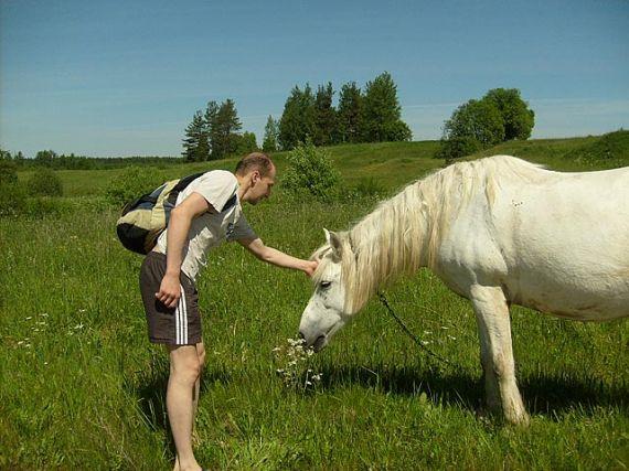 Росы – первое экологическое поселение в Беларуси (+Видео)