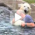 Еще один удивительный пример общения человека и животного! (Видео)