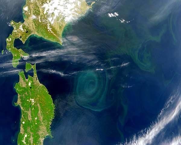 Insula de gunoi din Oceanul Pacific