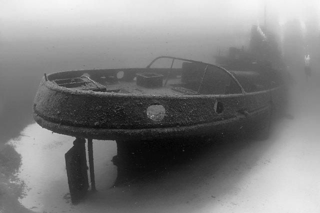 Подводный мир. Часть 5 (Фото)