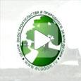 Как построить экодом (Видео)
