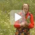 Монастырская травница (Видео)