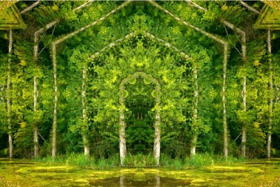 Лесные «порталы» Мэтта Уорфолда