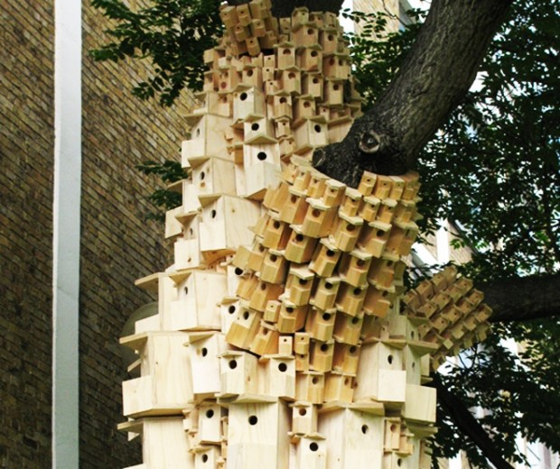 Птичий город