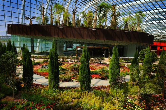 Райские сады Сингапура