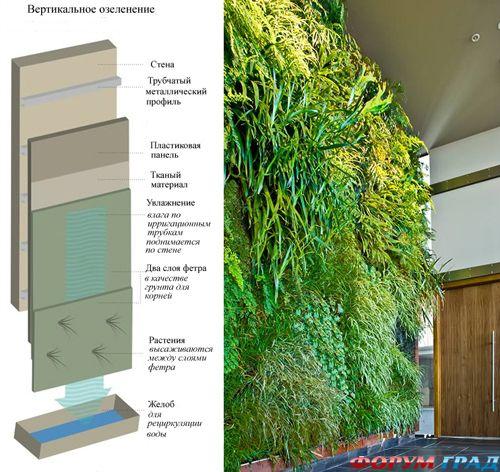 Цветы стеной — делаем из комнаты настоящий сад