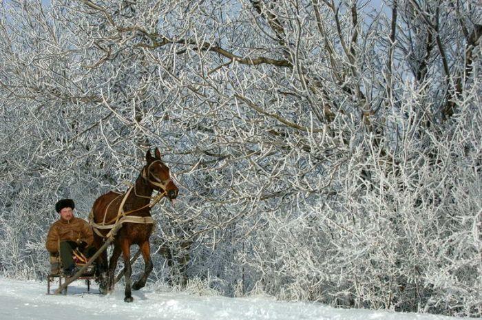 Народные приметы о погоде зимой