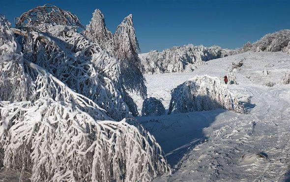 Фотографии зимнего Крыма (Фото)