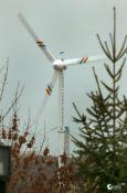 Ботанический сад сэкономит на электроэнергии за счет ветрогенератора