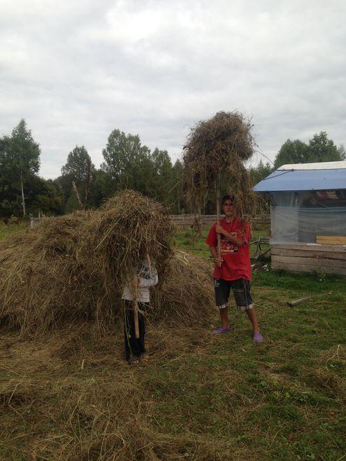 Юлия Жемчужникова поменяла московскую квартиру на домик в деревне, а автомобиль — на лошадь
