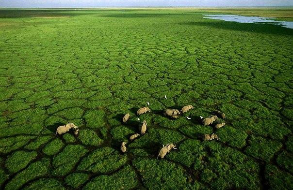 10 потрясающих фото Африки с высоты птичьего полета от фотографа Джорджа Стейнмеца!