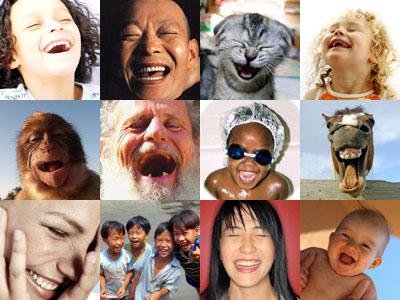 Почему нам следует смеяться на 25 минут больше