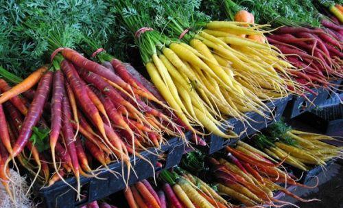 Нет ГМО! Топ-10 аппетитных гибридов