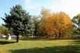 Унгенские парки - зеленые оазисы тишины