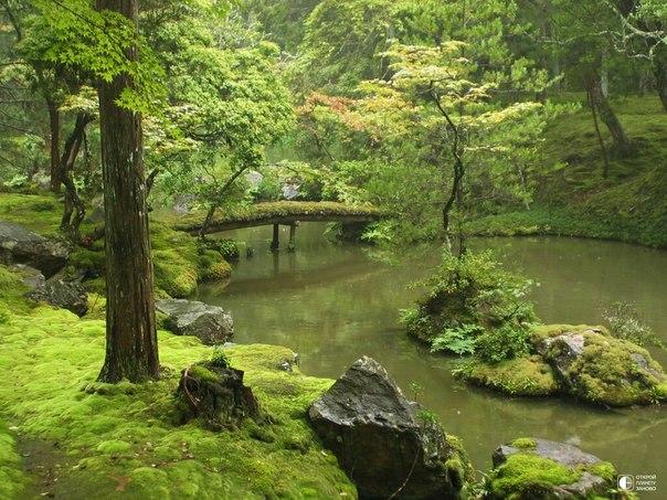 Сад мхов Saiho-ji в Японии