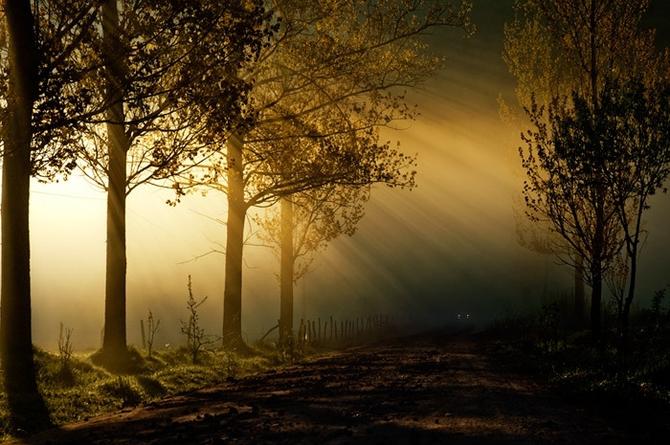 Фантастические пейзажи от Cornel Pufan