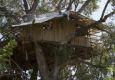 Creek n Crags эко отель на дереве