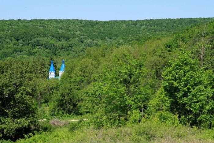 В Молдове создается первый Национальный Парк