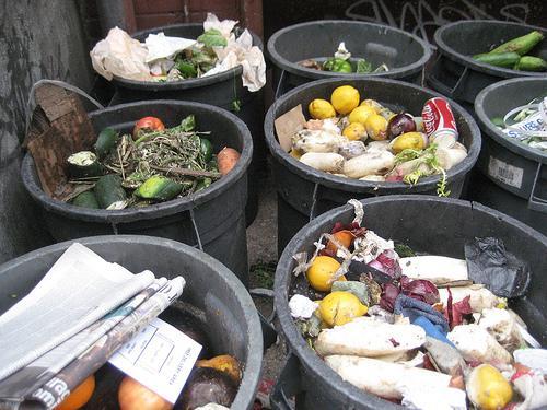 Переработка пищевых отходов в городе. Нью-Йорк