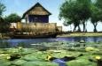 Румыния хочет развивать зеленый туризм на Дунае