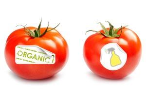 10 преимуществ органических продуктов