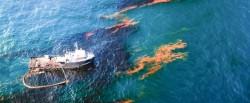 Бактерии, которые съедают нефтяные пятна