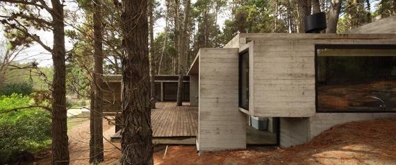 Экологичная архитектура в Аргентине: дом из бетона и древесины